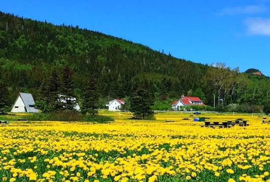 Provinces Maritimes & Gaspé 7 Jours
